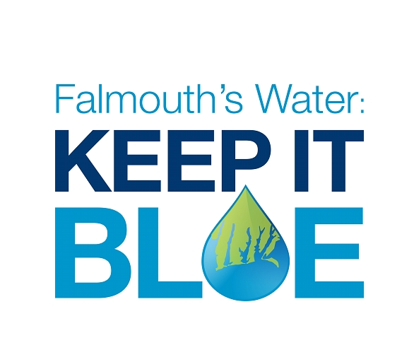 FALMOUTH WATER STEWARDS