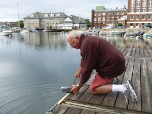 Volunteer Paul Ketchum at work, Eel Pond, Woods Hole.