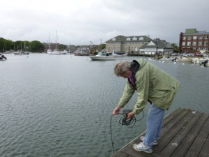 Priscilla Moor takes a sample in Eel Pond, Woods Hole.
